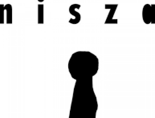 Wydawnictwo Nisza